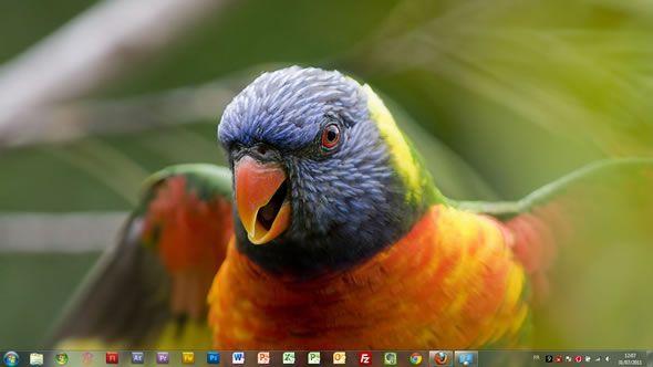 Capture d'écran - Magnifiques oiseaux thème visuel officiel pour Windows 7