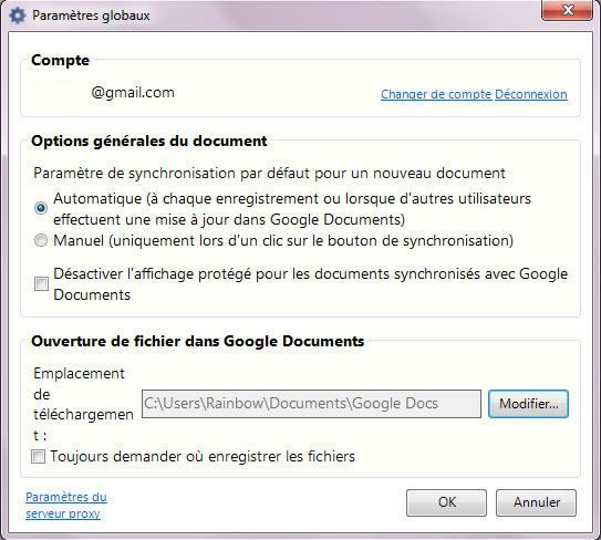 Capture d'écran - Google Cloud Connect dans Office 2010, options