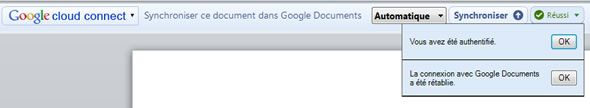 Capture d'écran - Google Cloud Connect dans Office 2010