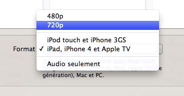 Capture d'écran - Choix du format de la vidéo à convertir, QuickTime