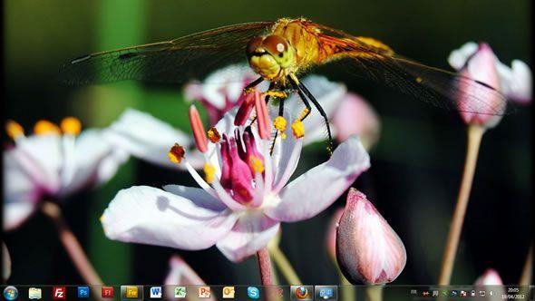 Capture d'écran - Jardin de rêve, thème visuel officiel Windows 7