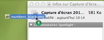 Capture d'écran - Remplacement de l'icône par défaut d'un fichier sous Mac OS X