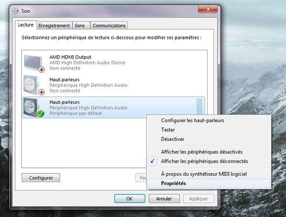 Capture d'écran - Propriétés des hauts parleurs sous Windows 7