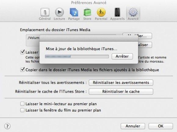 Capture d'écran - Déplacement de iTunes Media vers DS411