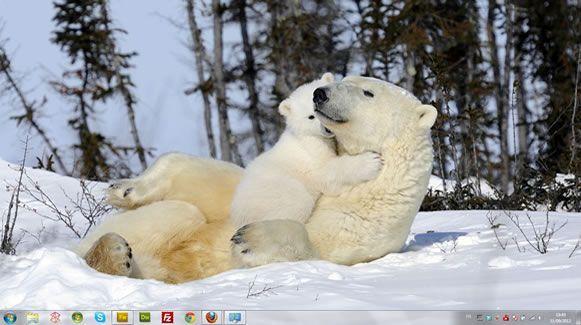 Capture d'écran - Famille à 4 pattes, thème visuel officiel Windows 7