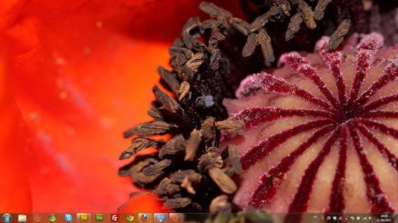Capture d'écran - Macros du jardin, thème visuel officiel Windows 7