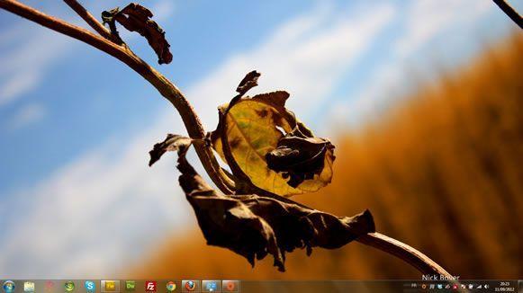 Capture d'écran - Saisons des fleurs, thème visuel officiel Windows 7