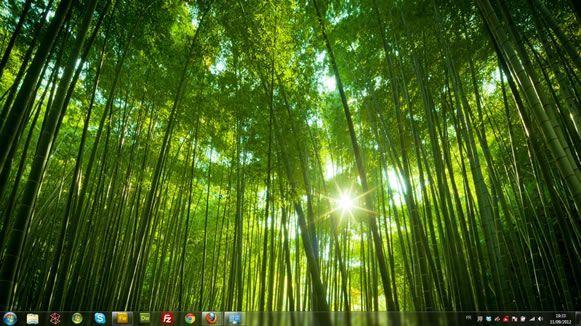 Capture d'écran - Forêts, thème visuel officiel Windows 7