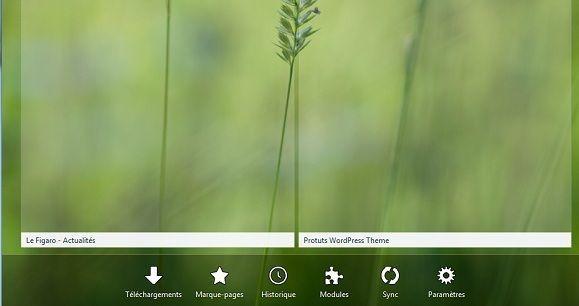 Capture d'écran - Nouvel onglet sous Firefox