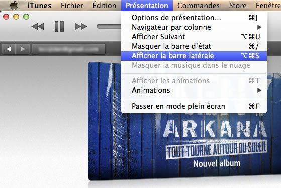 Capture d'écran - Menu Présentation d'iTunes 11 sous MacOS X