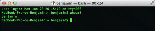 Capture d'écran - Terminal, MacOS X