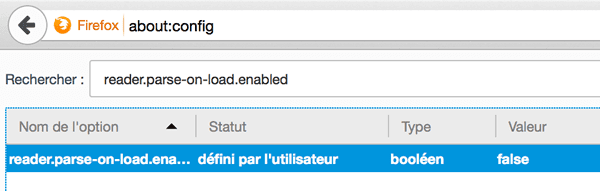 Capture d'écran - About config de Firefox