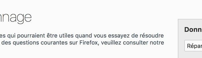 Catpure d'écran - About:support - Firefox