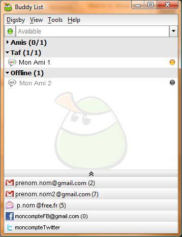 Capture d'écran - Digsby, liste des réseaux sociaux