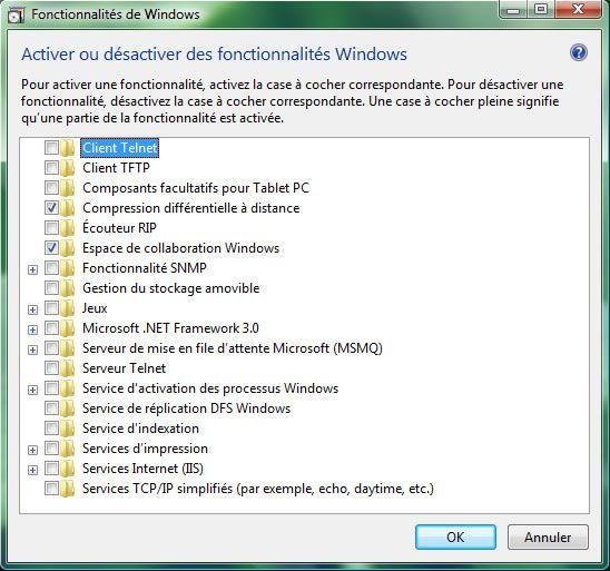 Capture d'écran - Fonctionnalités de Windows