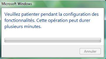 Capture d'écran - Mise à jour des fonctionnalités Windows
