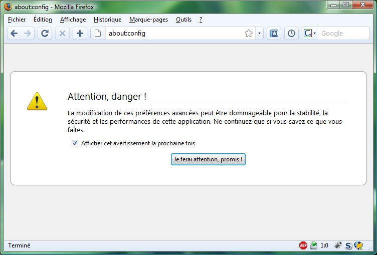 Capture d'écran - Firefox 3, about:config