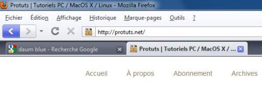 Capture d'écran - Thème Firefox, Daum Blue