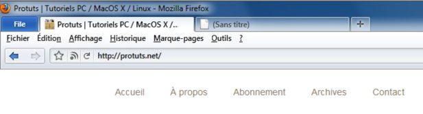 Capture d'écran - Thème Firefox, TwentyTenBuddy (2010)
