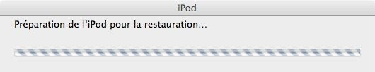 Capture d'écran - Remise à zéro de l'iPod touch