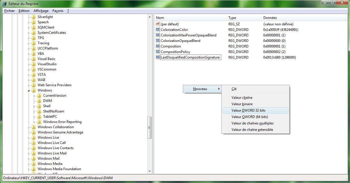 Capture d'écran - Editeur de Registre, création de la valeur Max3DWindows