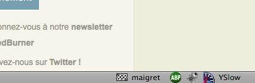 Capture d'écran - Mozilla Weave, icône dans la barre de détails