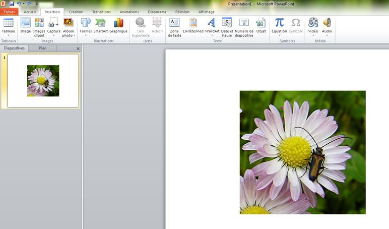 Capture d'écran - Insertion d'une image dans PowerPoint 2010