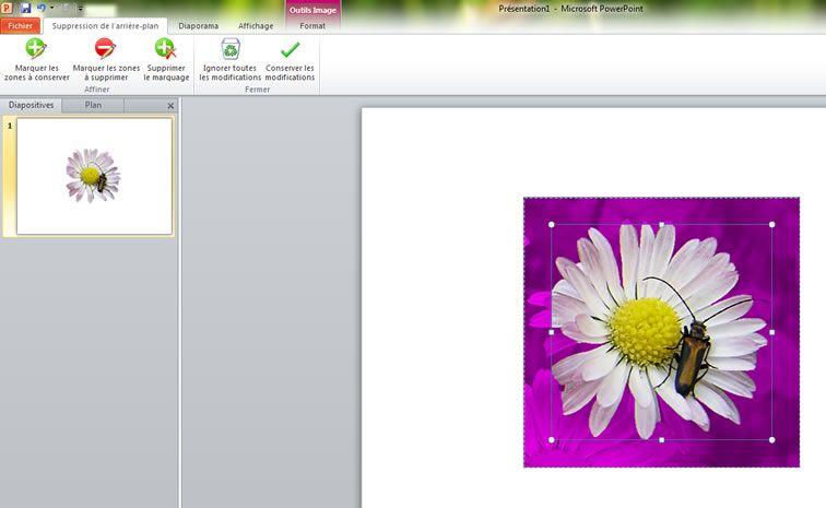Supprimer l 39 arri re plan d 39 une image dans powerpoint 2010 for Image arriere plan pc