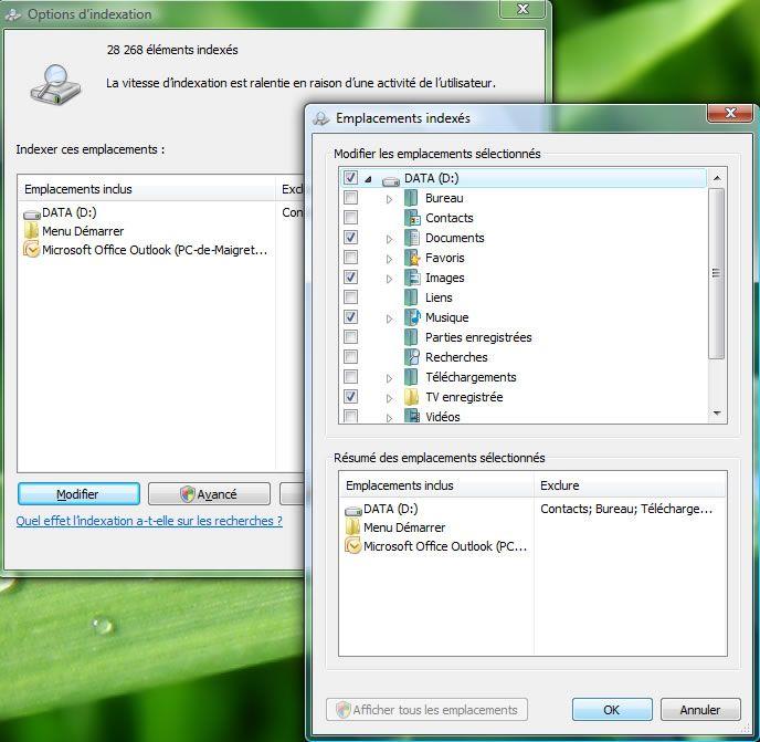 Capture d'écran - Options d'indexation, choix des emplacements à exclure de lindex