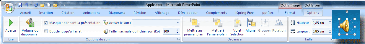 Options de la narration enregistrée - PowerPoint 2007