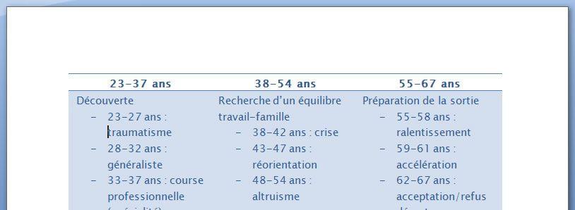 Capture d'écran - Word 2007, après application des styles