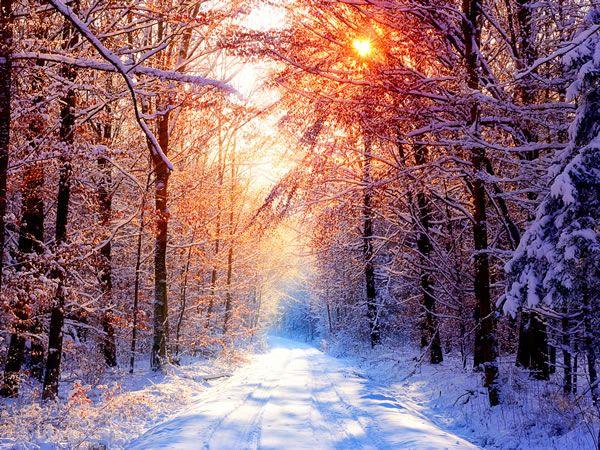Freezing Winter Landscape HD Wallpapers Fond d'écran - Winter Wallpaper III