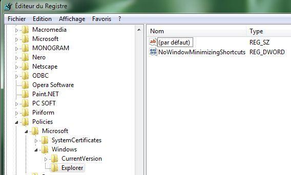 Capture d'écran - Ajout d'une nouvelle clé au registre