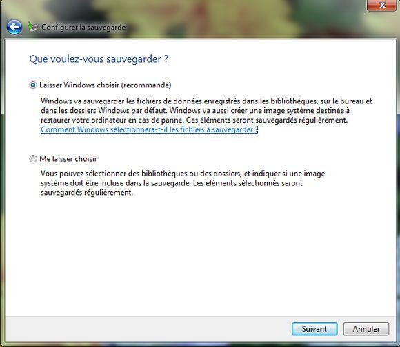 Capture d'écran - Choix des données à sauvegarder