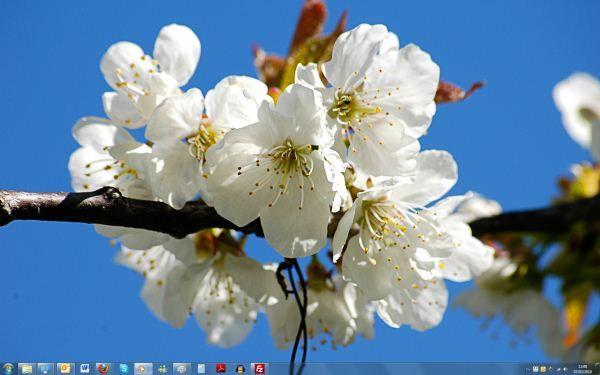 Capture d'écran - Thème Czech Spring pour Windows 7
