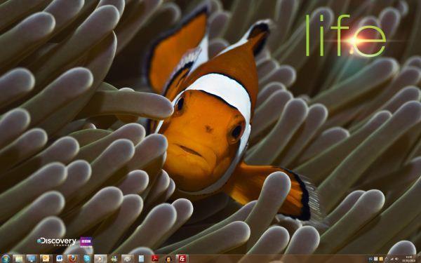 Capture d'écran - Thème Life pour Windows 7