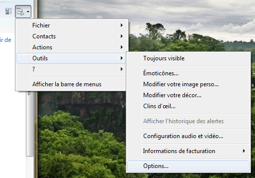 Capture d'écran - Accès aux options de Windows Live Messenger